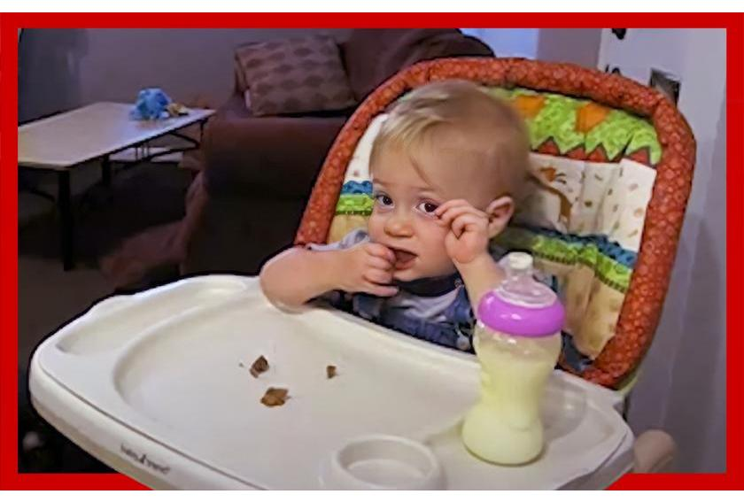 Baby Tries Fruitcake