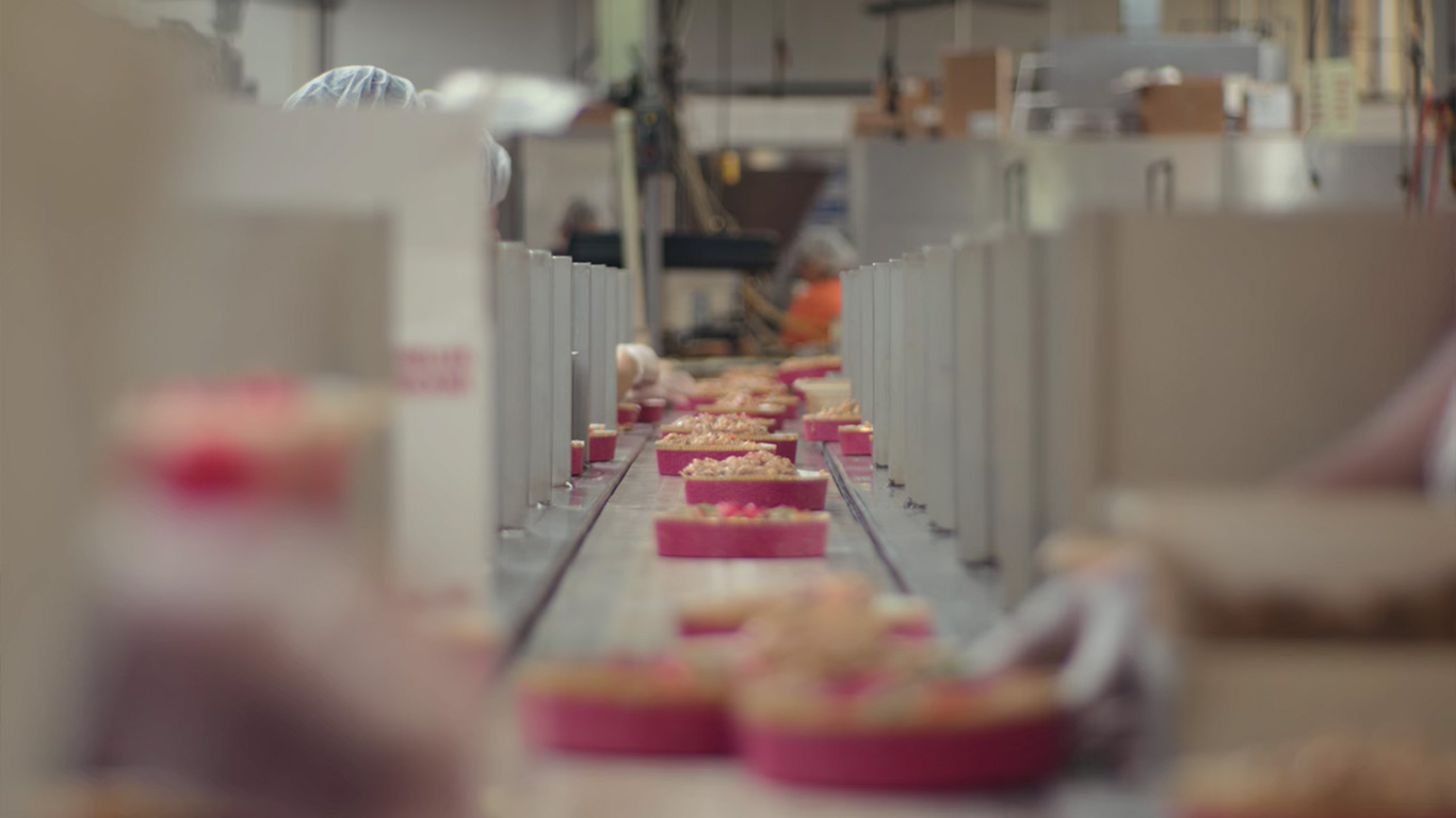 Cake Decorators Placing Toppings On DeLuxe Fruitcake On Baking Line